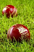 Two cricket balls in grass