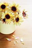 Gelbe Chrysanthemen in einem Becher