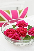 Pink roses floating in a bowl of water