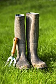 Rubber boots and garden tool on grass