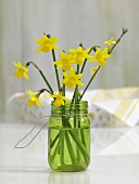 Bunch of narcissi in a jam jar of water