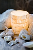 Mother of pearl lantern and snail shells