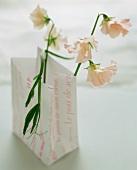 Blumen in einer Papiertüte
