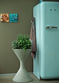 Planter with fresh herbs next to refrigerator