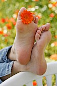 Someone relaxing with a flower between their toes