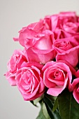 Bouquet of Pretty Pink Roses