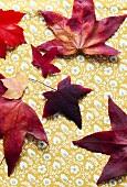 Herbstblätter auf Tischtuch