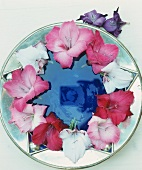 Pink and white flowers arranged in a circle on a plate