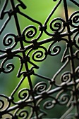 A wrought iron fence (detail)