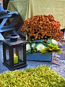 Autumnal atmosphere - a lantern with a burning candle and autumn aster in a box