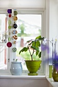 A plant in a green pot and a ceramic jar on a window sill