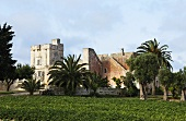 Romantic castle in Italy with palms in the large grounds