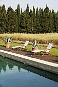 Lounge chairs with cushions, poolside with a view of a field of grain