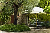 Gravel patio with a tree and garden furniture under a sun umbrella in front of a hedge