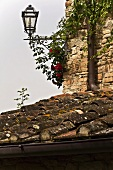 A lantern jutting out from the corner of a house and a view of an old tile roof