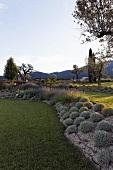 Terraced areas in a professionally designed garden in a Mediterranean landscape