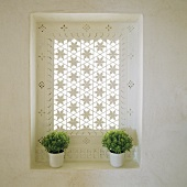 A window with a carved floral pattern and green plants in white pots