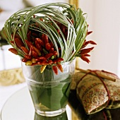 Red chilli peppers and decorative grass in a glass vase with a gift next to it
