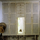 A simple built-in cupboard with a meshwork front