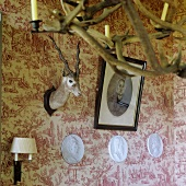 A stuffed animal head and a picture hanging on a wall with patterned wallpaper