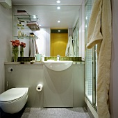 A bathroom with a toilet and a wash basin against a mirrored wall