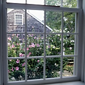 A view through a transom window onto a garden and a neighbouring house