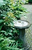 A stone birdbath in a garden