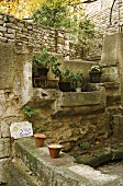A Mediterranean square with a natural stone wall and plants on a stone shelf