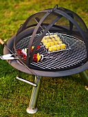 Grill with skewers in the garden