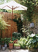 Corner of a garden with a brick wall and fencing, a parasol, pots and planters, flowers, shrubs