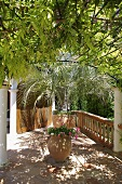 Patio area with potted plants covered by pergola