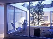 View through glass doors to patio with modern garden furniture and potted plant.