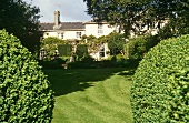 An English country house garden with box hedges