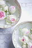 White roses in bowls of water