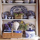 Blau-weisses Geschirr, Büste, und Blumen im weissen Regal