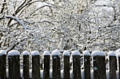 Wooden fence with snow mounds in front of a winter landscape
