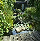 Gartenteich mit verschiedenen Pflanzen und einem Holzsteg