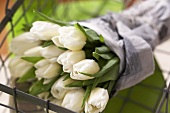 White Tulips Wrapped in Newspaper in a Metal Shopping Cart