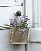 Flowers in a jute sack
