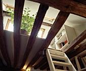 Galerie-Untersicht mit weisser Holzleiter zwischen alten Deckenbalken