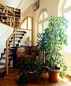 Hoher Altbau mit Pflanzen und antiken Möbeln zwischen Rundbogenfenstern und Treppe zu Bibliothek im Mezzaningeschoss