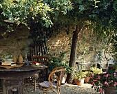 Rustikaler Holztisch unter dem Baum in einem ummauerten toskanischen Garten im Sommer