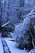 Schmaler Weg zu einem Gewächshaus am Waldrand unter Schnee