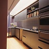 Moderne Küchenzeile mit Edelstahlfronten