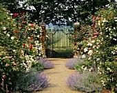 Blühender Garten mit Weg und schmiedeeisernes Eingangstor