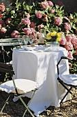 Festlich gedeckter Tisch im blühenden Garten