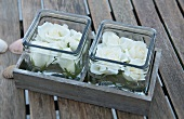 Rose in square glasses on a garden table
