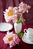 Pink peonies on a laid table (red surface)