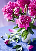A bunch of peonies in a vase