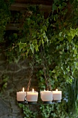 A candle holder under ivy on a terrace